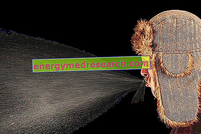 Швидкість чихання