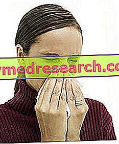 Профилактика на алергичен ринит