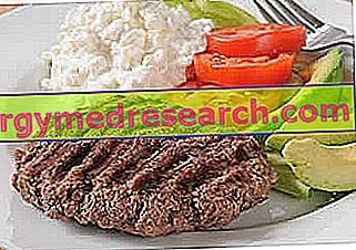 النظام الغذائي عالي البروتين والضرر الكلوي