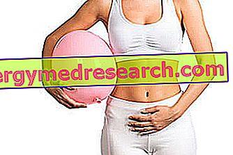 hipertenzija ir didelis pilvas)