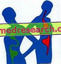 Dysbios - Vård, kosttillskott, behandling