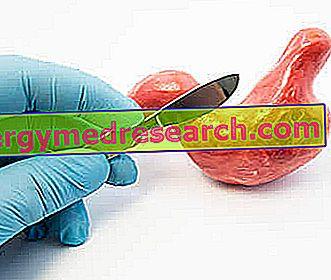 Mao kasvaja: hooldus ja ravi