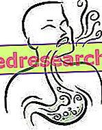 Happamuus ja polttava vatsa
