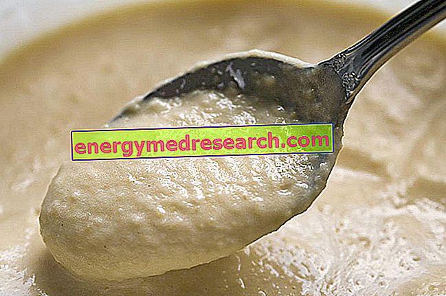 胃不全麻痺の場合の食事アドバイス