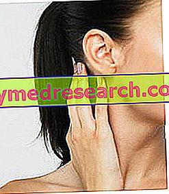 Orelhas nos ouvidos: sintomas, diagnóstico, cura