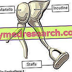 otosklerozą