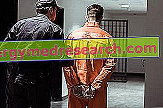 Castración química: ¿qué es?  Propósitos, funcionamiento, drogas y efectos de A.Griguolo