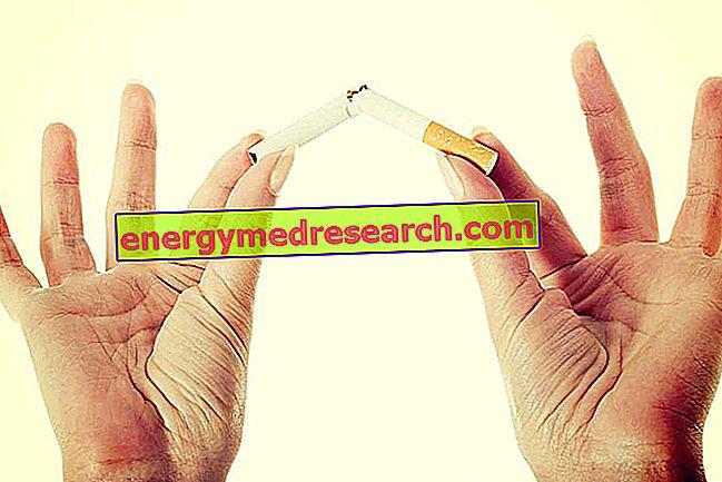 Wat gebeurt er als je stopt met roken?
