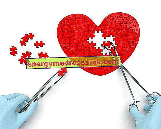 من هو جراح القلب؟