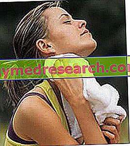 Ajuste de temperatura corporal y fiebre
