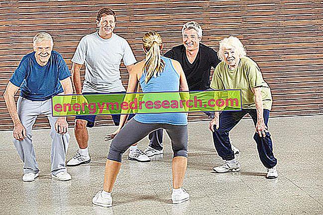 Prevenir la enfermedad de Alzheimer con una vida social activa.