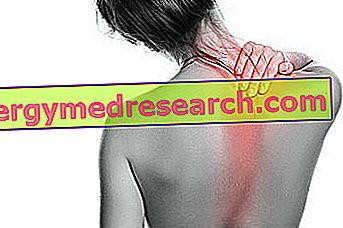 Trapezium contractuur: symptomen en oorzaken, diagnose, zorg en behandeling, preventie van R.Borgacci