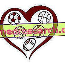 Süda ja sport