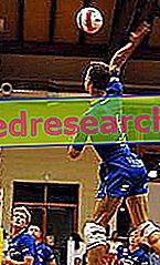 """Le geste sportif """"aérien"""": facteurs d'impact fonctionnels et technico-sportifs"""