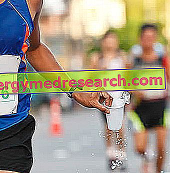 Correr verano: importancia de la hidratación adecuada