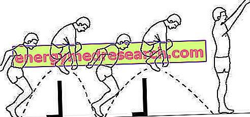 Het ritme van de race in de training van snelle races