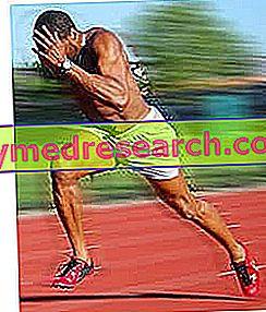 Greitojo ir lauko lenktynių greičio ir ištvermės mokymas