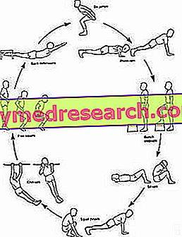 Obuka kruga (AC) ili obuka kruga (CT) - vrste