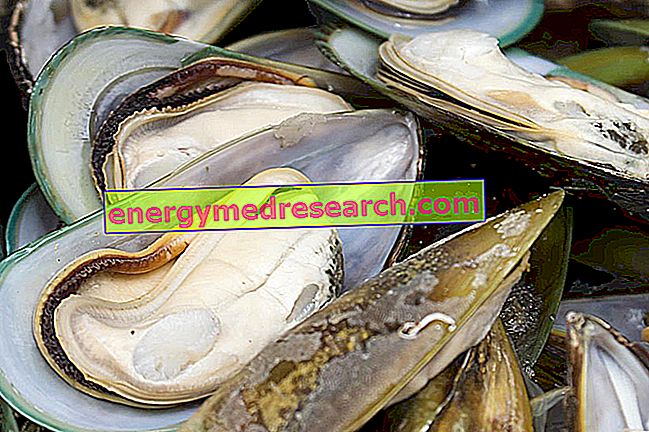 Sindrom neurotoksin Mollusc