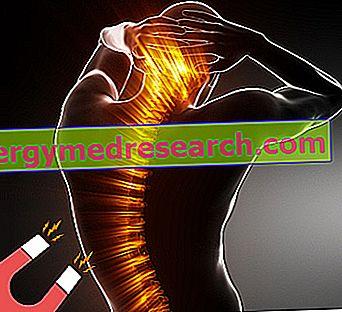 mágnesterápia