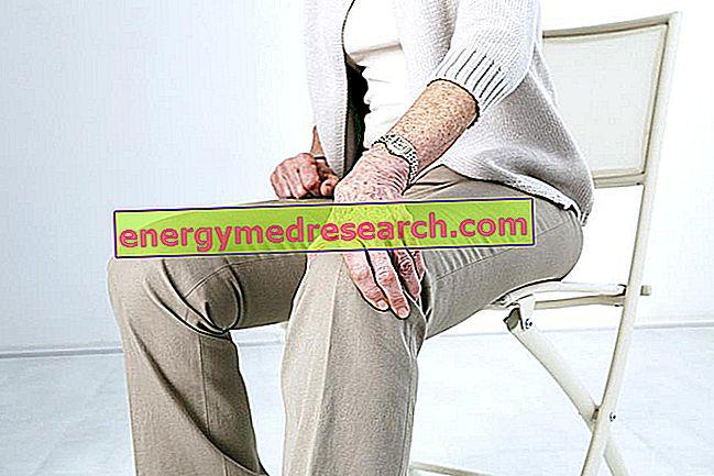 Põlve protees: mõned huvitavad numbrid