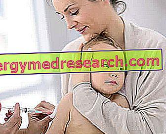 اللقاحات في الأطفال