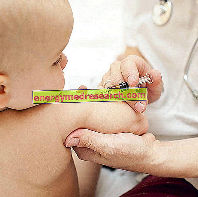 Hvordan virker vaksiner?