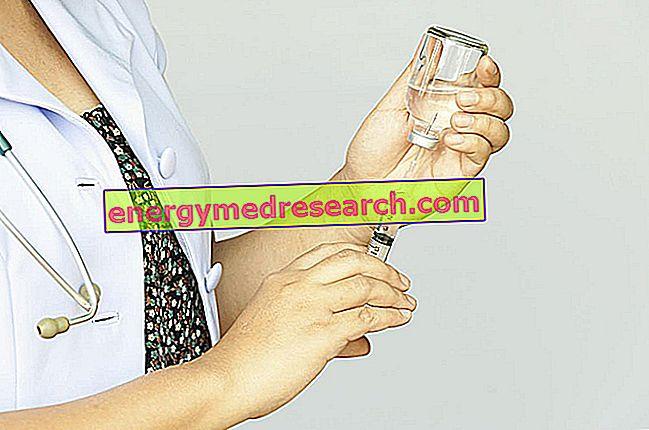 Meningite meningocócica: vacinas disponíveis