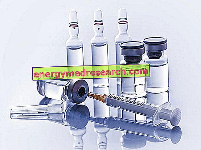 La vacuna anti-Haemophilus influenzae tipo B