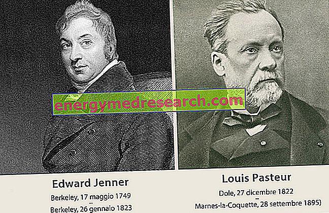 Vaccins: geschiedenis en ontdekking van vaccins