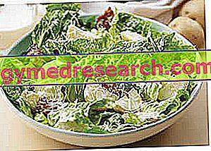 Salatalar ve salatalar